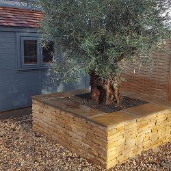 cotswold-stone-design-cheltenham-landscaping-tree